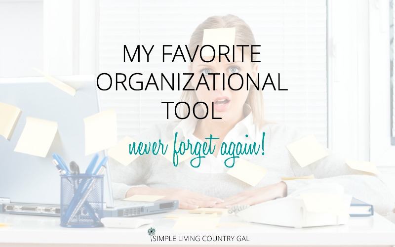 My Favorite Organizational Tool
