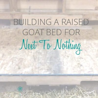 A raised goat bed doesn't need to be fancy and this one definitely isn't. But it is cheap!