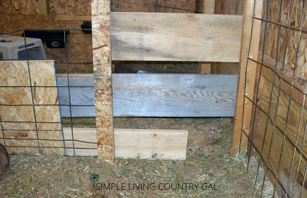 A wooden opening. How to set up a DIY goat kid pen for your baby goats.