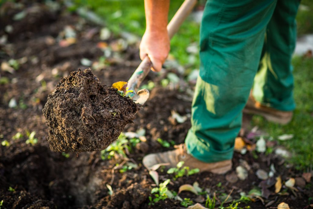 how to prep your soil to have a better garden