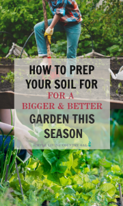 In order to have a successful garden, you need to make sure you have good and healthy soil. Follow these simple tips to improve your ground and grow a better garden this season. #gardening #gardeningforbeginners #gardensoil #slcg