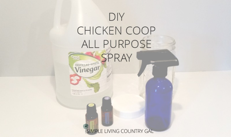 DIY Chicken Coop All Purpose Cleaner