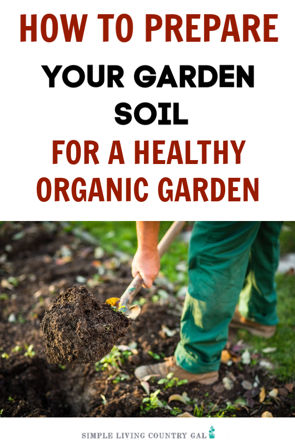 HOW TO PREPARE YOUR SOIL FOR A HEALTHY GARDEN THIS SUMMER