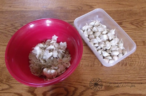Garlic is one of the easiest things to grow and has a very long shelf life. Here is a step by step guide to growing yourself some amazing garlic!