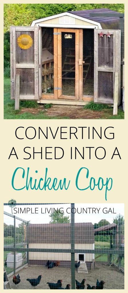 How to turn a shed into a chicken coop. Your DIY guide on how to make use of what you have on hand. Save money and convert a shed into a full chicken coop. A step by step guide. #raisingchickens #chickens #backyardchickens #slcg