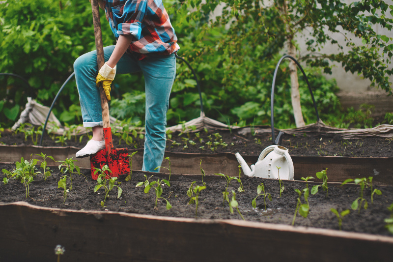 woman planting a garden. The best produce to plant in your first garden