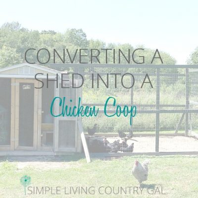 Here is a step by step guide to converting a shed into a coop.