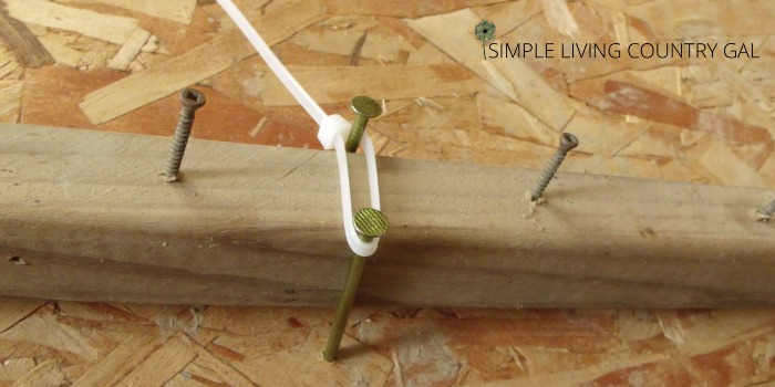 how to cure garlic using a DIY garlic drying board.