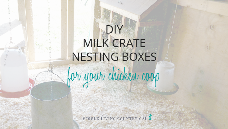Building Milk Crate Chicken Nesting Boxes
