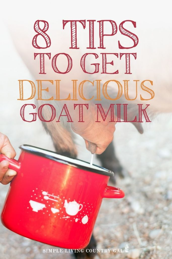 8 tips for the delicious tasting goat milk