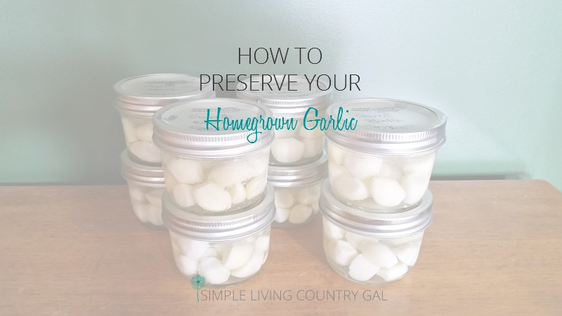 Enjoy fresh garlic year round with this easy step by step guide. How to preserve garlic.