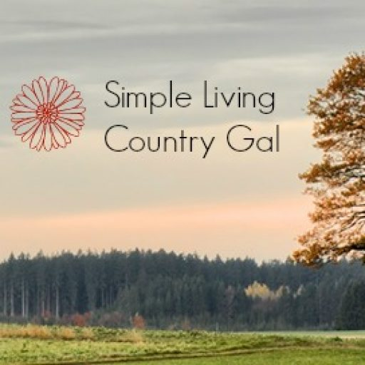 Simple living country gal striving to live a simplified for Minimalist living vs simple living