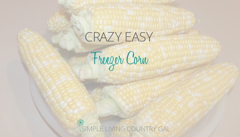This freezer corn is sweet and so yummy!! If you are new to preserving food, this is a great way to get your feet wet