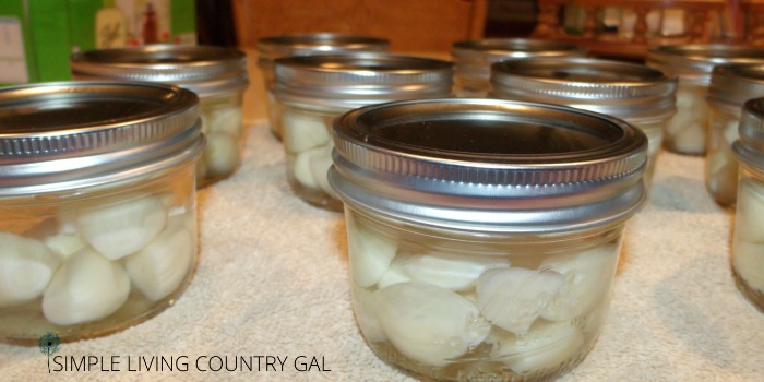 jars of preserved garlic cloves on a counter. Tips on preserving garlic cloves.