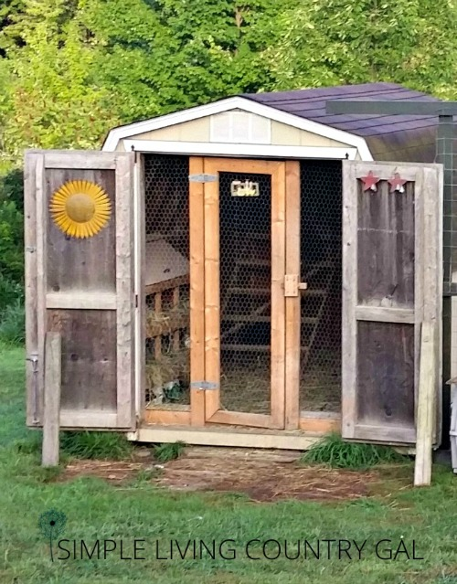 A chicken shed. Good ventilation will keep animals cool this summer.