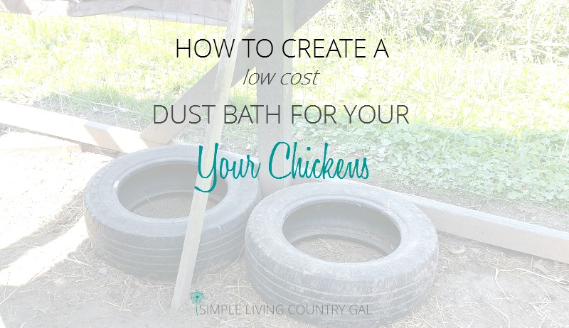 How To Make A Dust Baths For Your Chickens