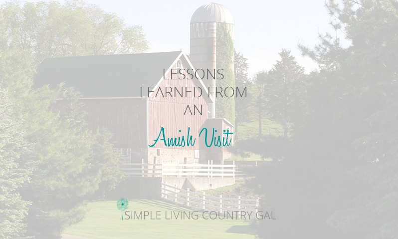 Lessons Learned From An Amish Visit
