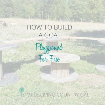 Learning how to make something with what you have on hand is the motto of every homesteader. Learn how to make a playground for your goats for free.