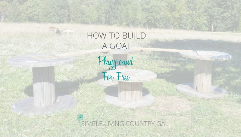 Building A Free DIY Goat Playground – Step by Step
