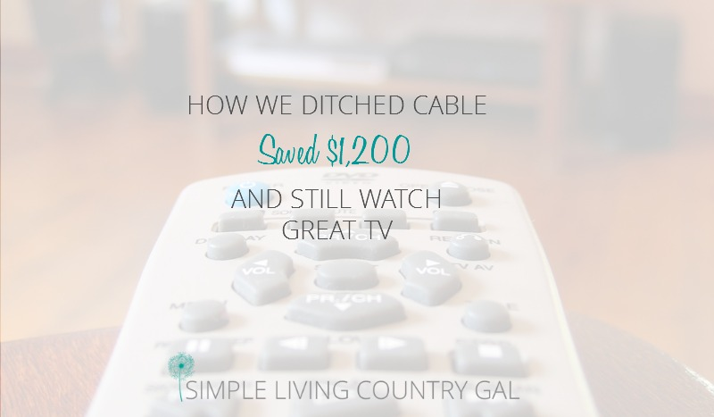 How We Ditched Satellite TV And Saved $1,200 A Year!