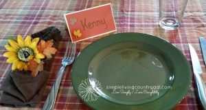A dinner setting for thanksgiving. Frugal thanksgiving tips