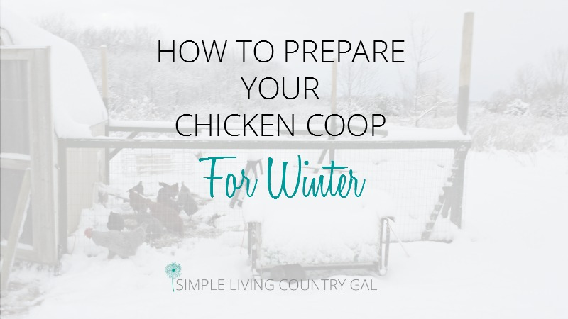prepare your coop for winter