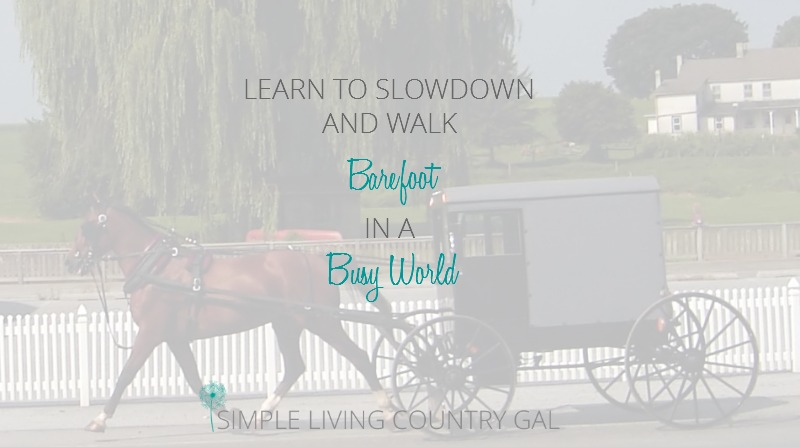 It's Time To Amish Slow Down :)