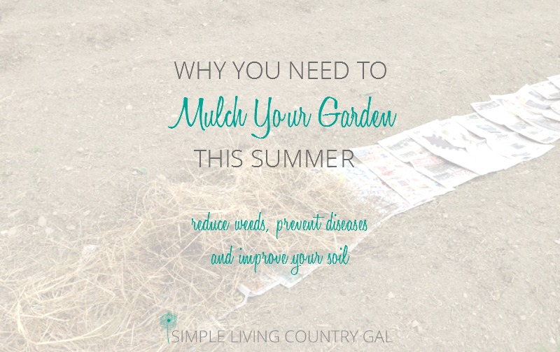 The Benefits Of Mulching Your Garden
