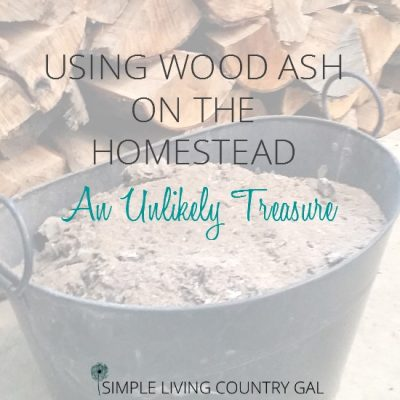 Using wood ash in the garden and in your compost pile is an inexpensive way to fight pest and improve soil quality.