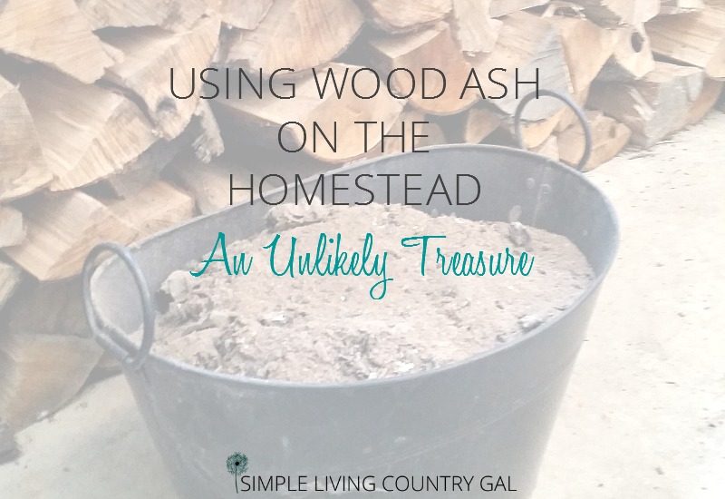 What To Do With Wood Ash On The Homestead
