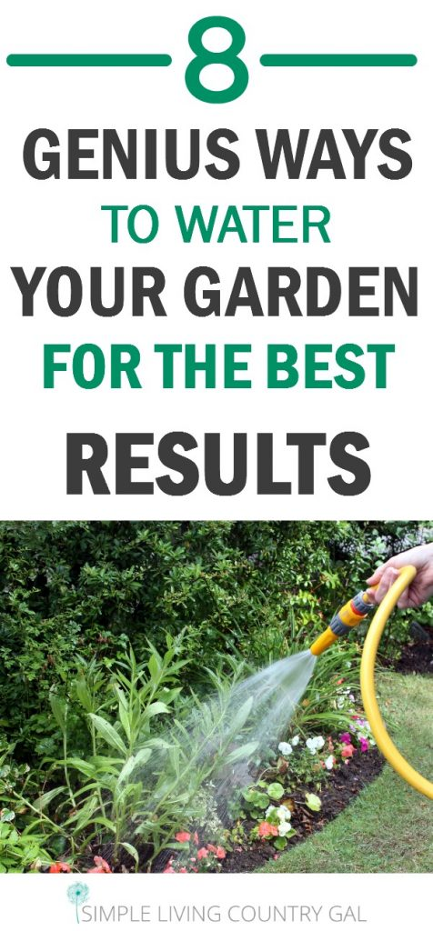 How to water your garden the right way. Yes it does matter!