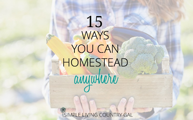 15 Ways To Homestead Anywhere