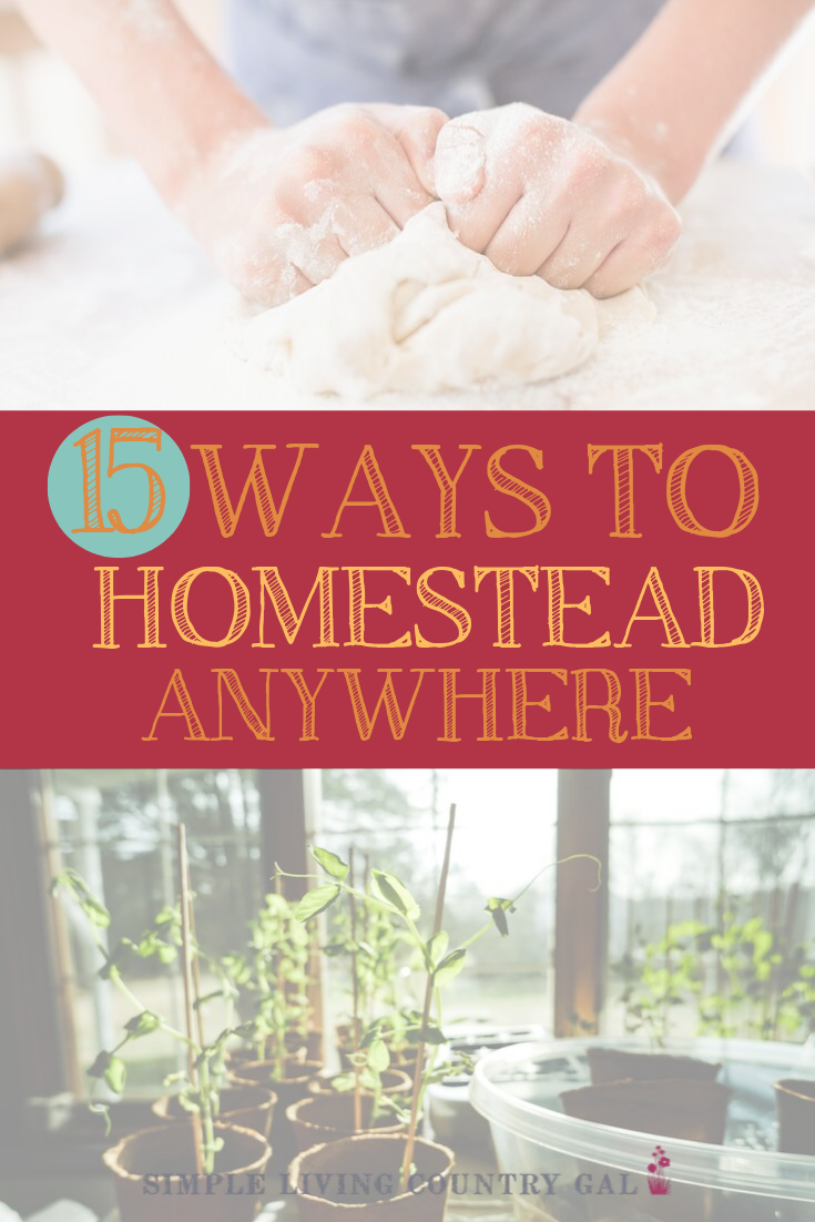 simple tips you can do to homestead anywhere