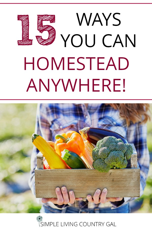 Learn how to homestead anywhere. In the city, the country or the suburbs. These are 15 simple ways to have a homestead no matter where you live. #HOMESTEAD #homesteading #urbanfarming #garming
