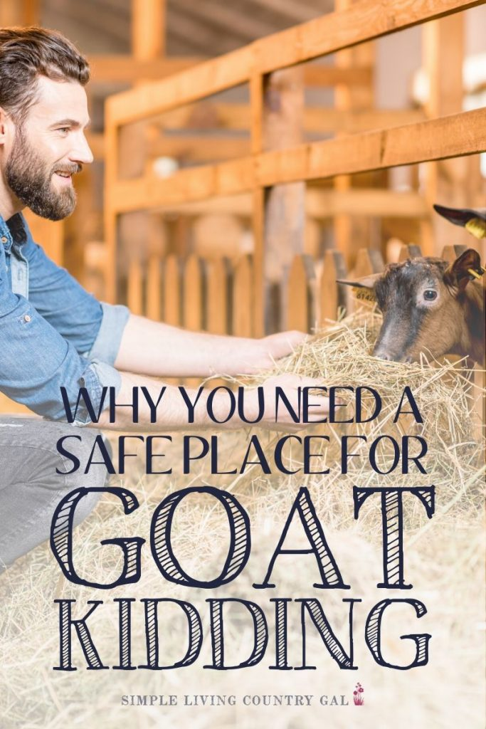 Why you need a safe place for goat kidding