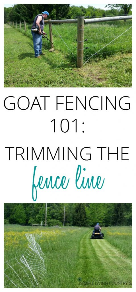 Trimming the fence line is an important chore that needs to be done to ensure your animals stay safe and secure. Keep your animals in and predators out. #fencing
