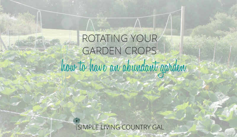 why rotating garden crops is important