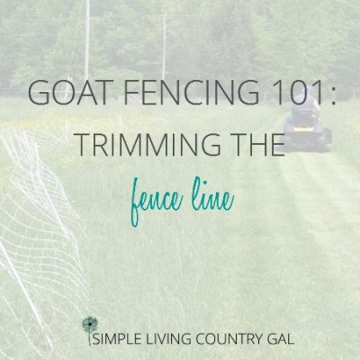 trimming the fence line is an important chore that needs to be done to ensure your animals stay save and secure