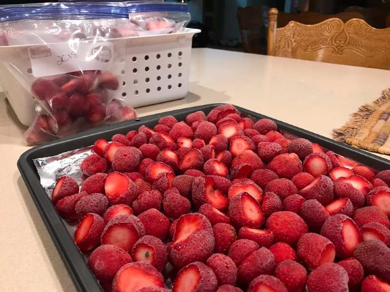 Freezing strawberries on a cookie sheet