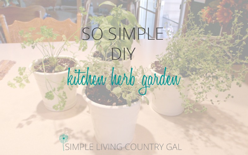 So Simple DIY Kitchen Herb Garden