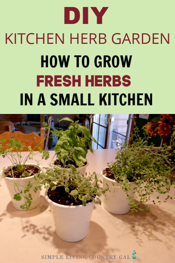Love fresh herbs? Why not have a garden right in your kitchen. Think you don't have room? Think again! Use the space you have and enjoy a beautiful herb garden right in your kitchen window. #herbgarden #gardendiy #gardening #herbs #slcg