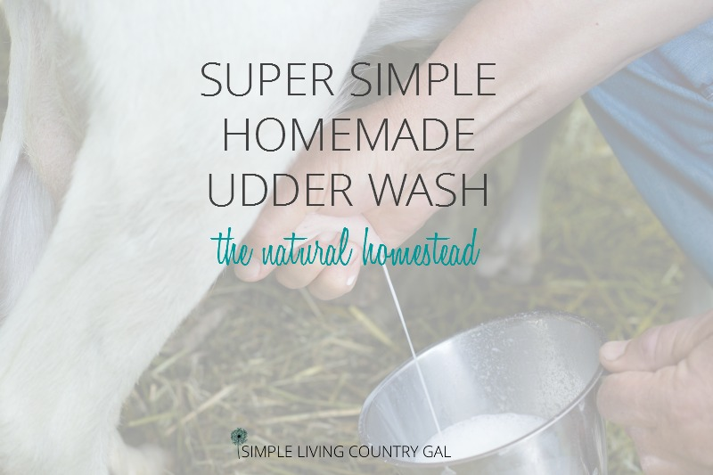 Super Simple DIY Udder Wash