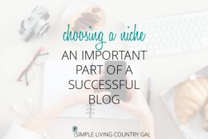 Follow these steps to help you choose the best niche to write about. Love your niche so you love your blog!