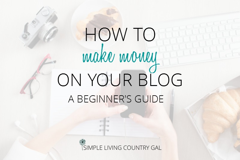 a beginners guide on how to make money blogging.