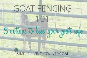 learn about goat fencing