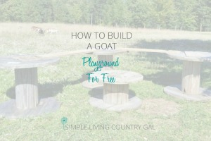 a cheap and affordable way to create a playground for your goats
