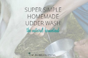 how to make your own udder wash