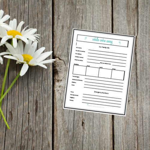 babysitter checklist and emergency contact sheet