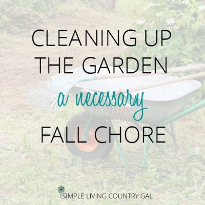 cleaning up the garden for fall