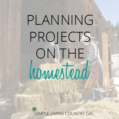 planning projects on the homestead